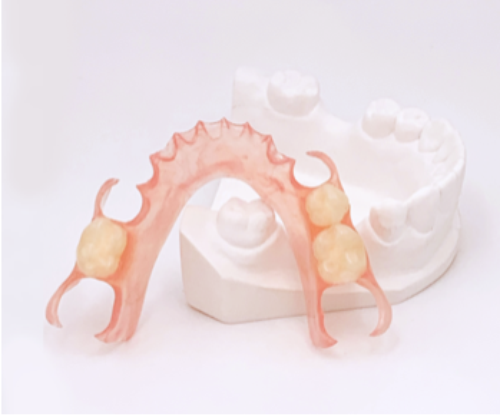 Image for Partial Denture Products collection.